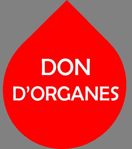 Organes1